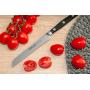 Ніж для томатів 130 мм Manhattan Arcos  (162000)